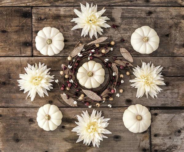 Photograph - The Great White Pumpkins by Kim Hojnacki