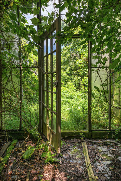 Photograph - The Greenhouse Door by Lindy Grasser