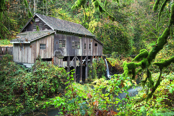 Photograph - The Grist Mill, Amboy Washington by Hans Franchesco