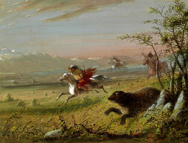 Wall Art - Painting - The Grizzly Bear by Alfred Jacob Miller