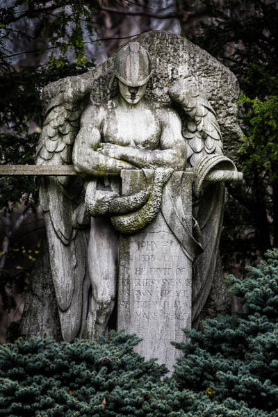 Wall Art - Photograph - The Guardian by Dale Kincaid