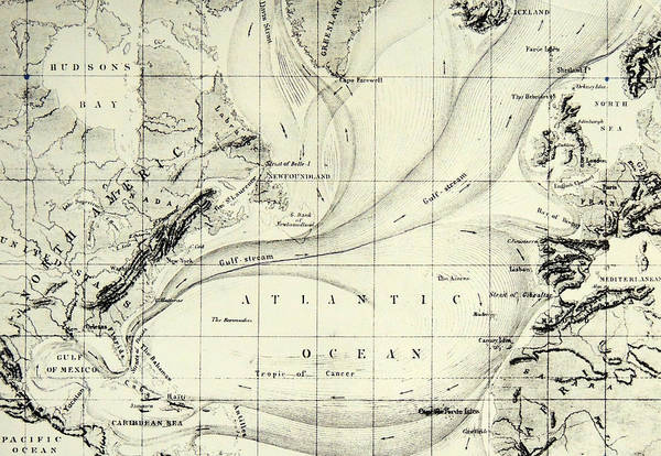 Atlantic Drawing - The Gulf Stream Of The Atlantic Ocean by  Elisee Reclus