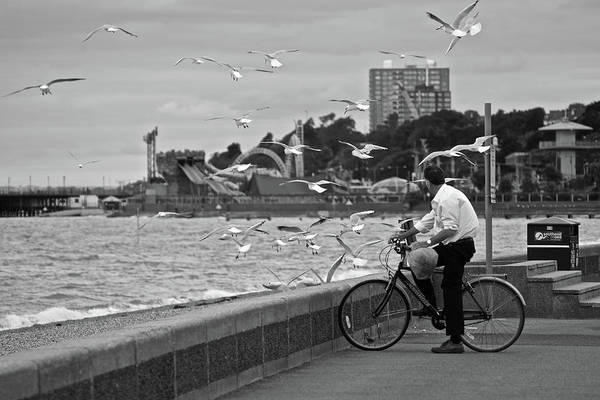 Photograph - The Gull Man by Makk Black