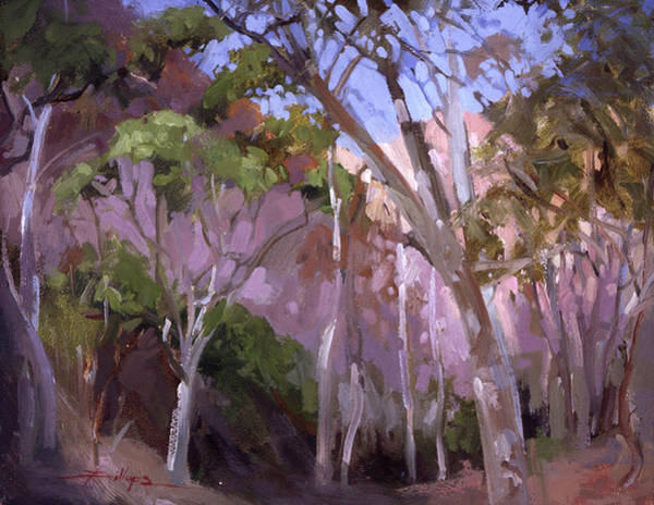 Painting - The Gum Grove Catalina by Betty Jean Billups