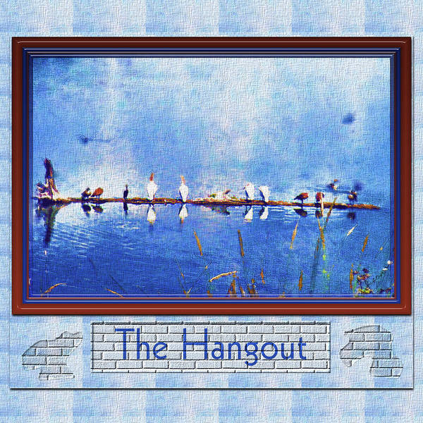 Photograph - The Hangout by Susan Kinney