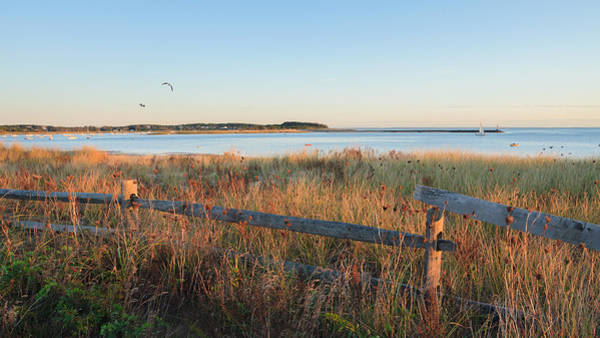Wellfleet Photograph - The Harbor by Bill Wakeley