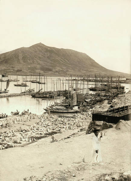Wall Art - Photograph - The Harbor In Fusan, Korea by Underwood Archives