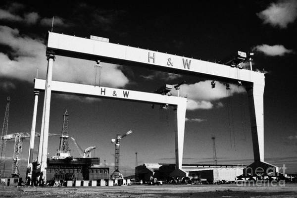 Goliath Photograph - The Harland And Wolff Shipyard In Belfast Northern Ireland Featuring The Samson And Goliath Cranes by Joe Fox