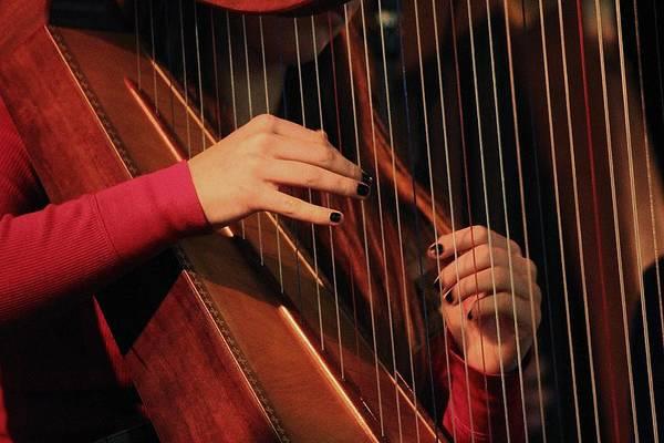 Wall Art - Photograph - The Harpist by Valia Bradshaw