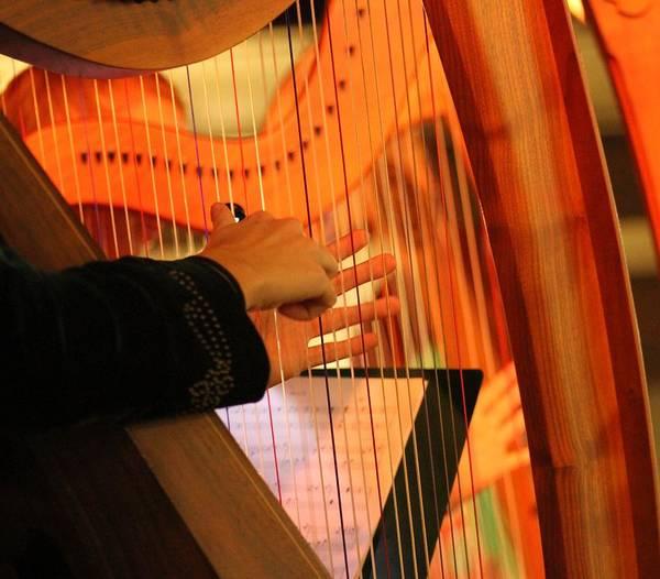 Wall Art - Photograph - Talking Hands The Harpist by Valia Bradshaw