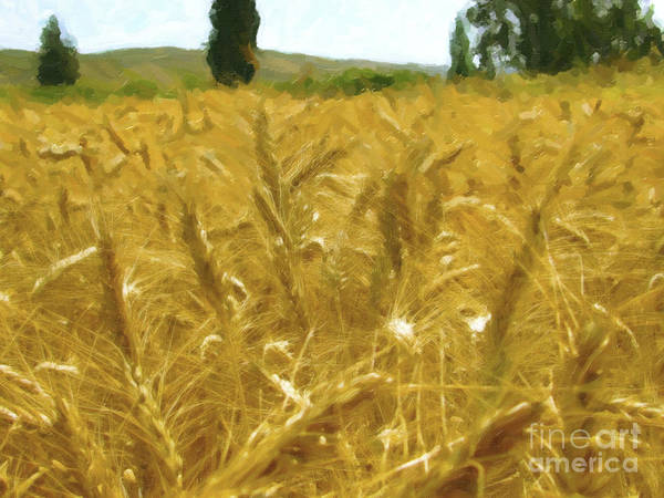 Digital Art - The Harvest Dry Oil Paint by Donna L Munro