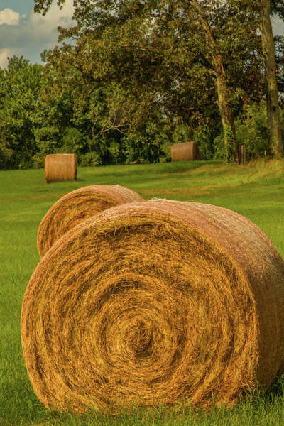 Photograph - The Hay Bales by Barry Jones