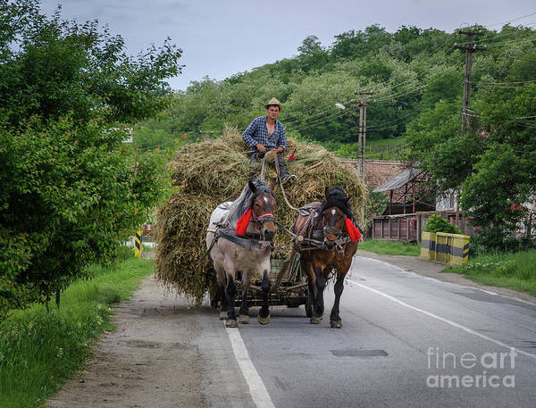 Photograph - The Hay Cart, Romania by Perry Rodriguez