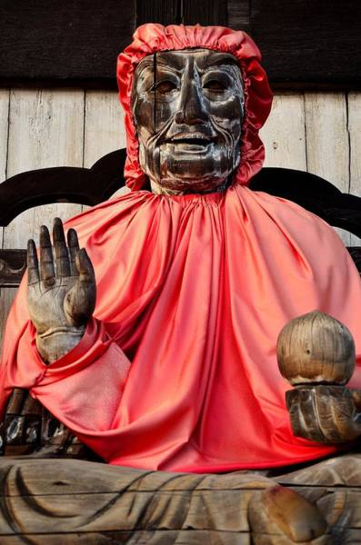 Nara Wall Art - Photograph - The Healer by Dean Harte