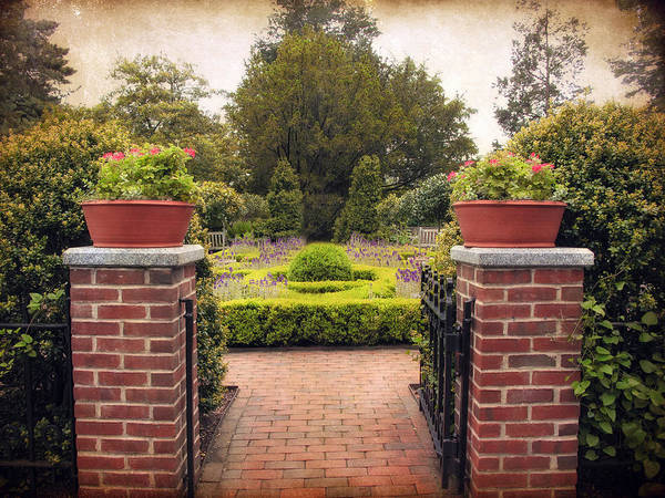 Formal Garden Photograph - The Herb Garden by Jessica Jenney