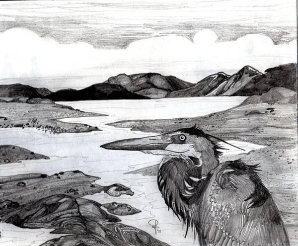 Great Blue Heron Drawing - The Heron Coast by Doug Hiser