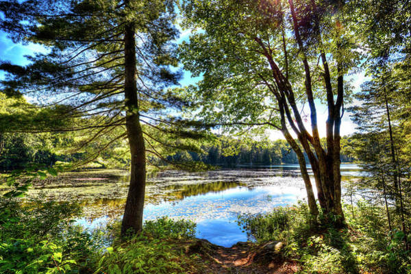 Photograph - The Hidden Gem Of Cary Lake by David Patterson