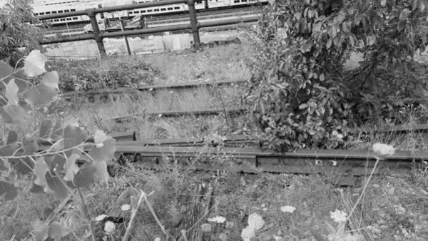 Deck Digital Art - The High Line 194 by Rob Hans