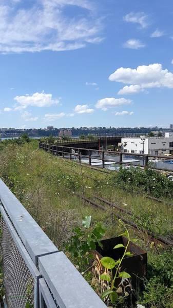 Deck Digital Art - The High Line 195 by Rob Hans