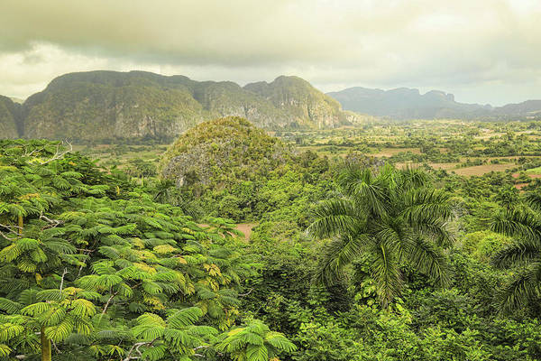 Photograph - The Hills Of Vinales by Mary Buck