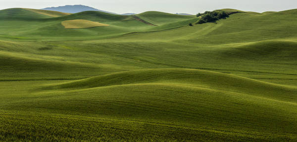 Photograph - The Hills Speak by Jon Glaser
