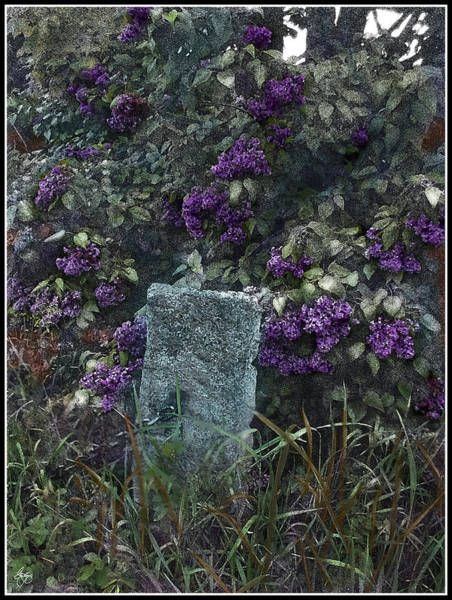 Photograph - The Hitching Post Lilac by Wayne King