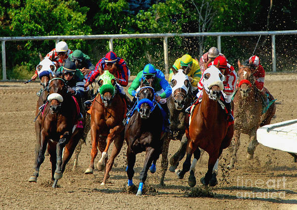 Racetrack Photograph - The Home Stretch by Marc Bittan