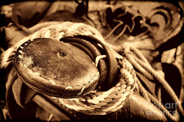 Photograph - The Horn by American West Legend By Olivier Le Queinec