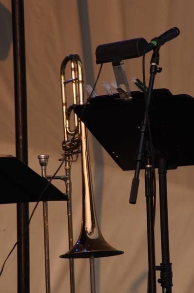 Photograph - The Horn by Buddy Scott