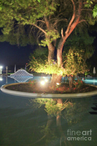 Photograph - The Hotel Galiano Pool by Donna L Munro