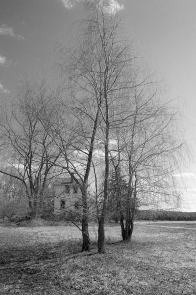 Photograph - The House by Sara Hudock