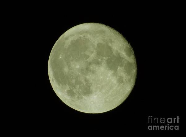 Photograph - The Hunters Full Moon 2016 by D Hackett