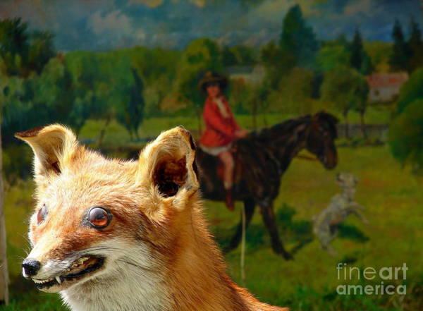 Conan Photograph - The Hunting by Mika Conan