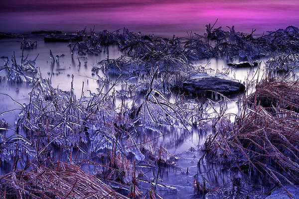 Photograph - The Ice Fields by CA Johnson