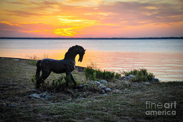 Photograph - The Iron Horse by Cheryl McClure