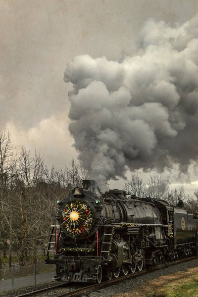 Photograph - The Iron Horse by Wes and Dotty Weber