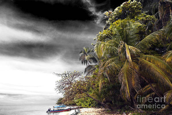 Photograph - The Island Fusion by John Rizzuto