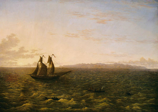 Painting - The Island Of Madeira by John Glover
