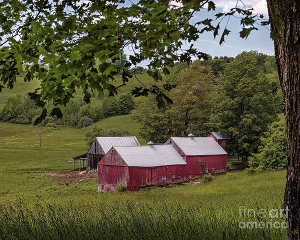 Photograph - The Jenne Farm II by Rod Best