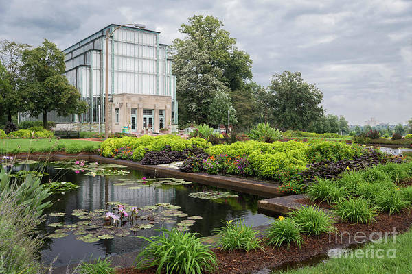 Photograph - The Jewel Box At Forest Park by Andrea Silies