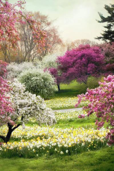 Photograph - The Joy Of Spring by Jessica Jenney