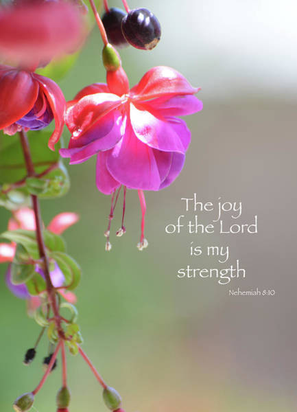 Photograph - The Joy Of The Lord by Lynn Bauer