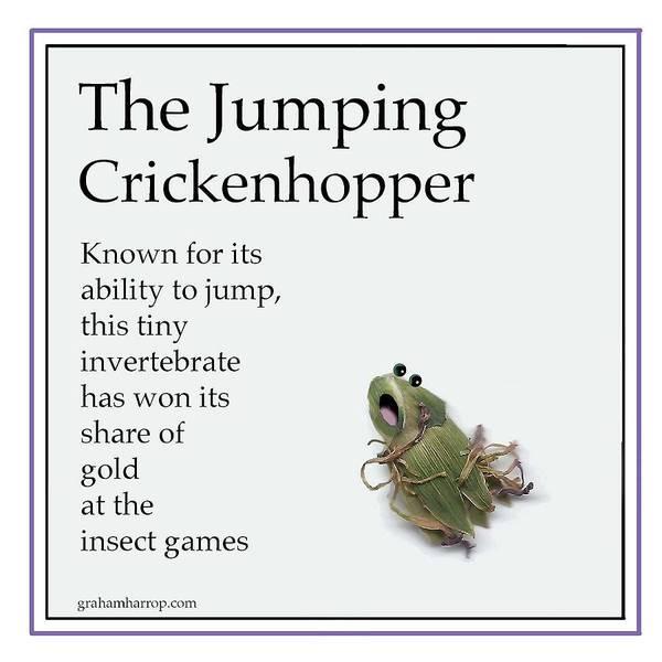 The Jumping Crickenhopper Art Print