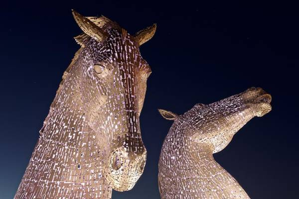 Photograph - The Kelpies At Night by Stephen Taylor
