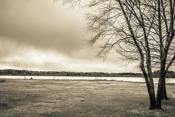Photograph - The Lake #29 by Wade Brooks