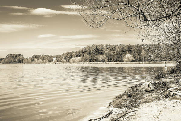 Photograph - The Lake #41 by Wade Brooks