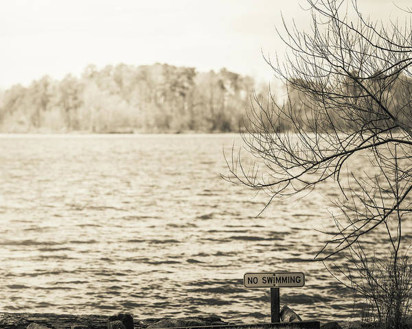 Photograph - The Lake #45 by Wade Brooks
