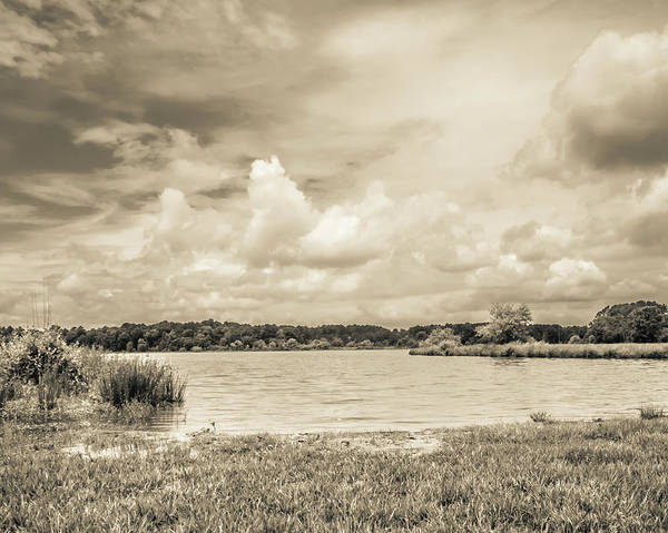 Photograph - The Lake #51 by Wade Brooks