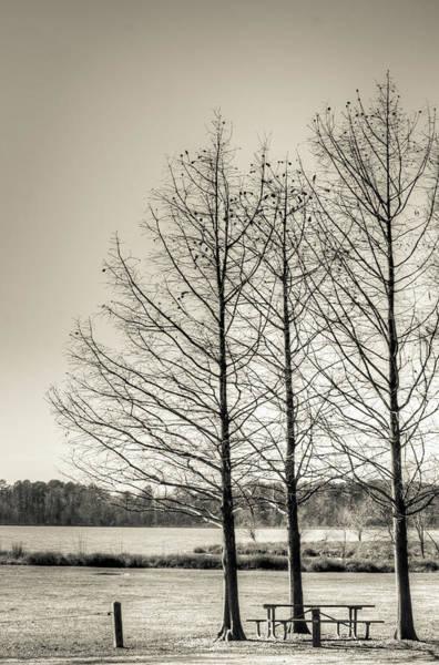 Photograph - The Lake IIi by Wade Brooks