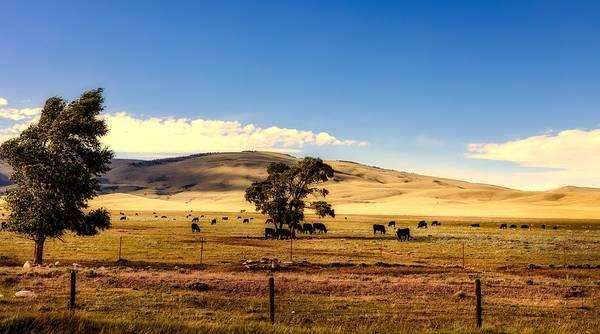 Laramie Photograph - The Laramie Plain by L O C